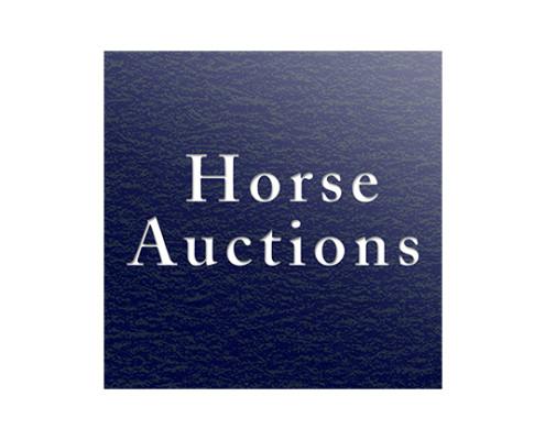 logo Horse Auction